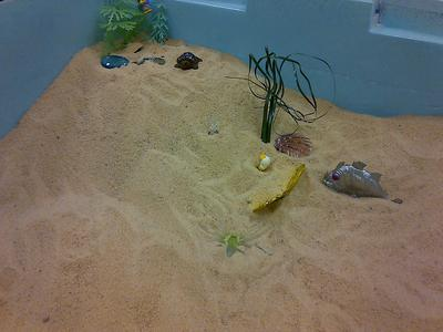 Transitional Objects Sand Tray Therapy Activity Student 4