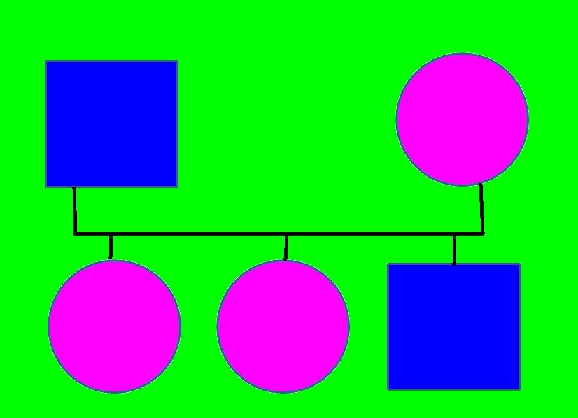 play therapy genogram