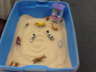 First Sand Tray in Sand Tray Therapy Class #3