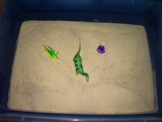 Sand Tray Therapy Student #5- Extended Tray Project #2