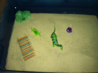 Sand Tray Therapy Student #5- Extended Tray Project #3
