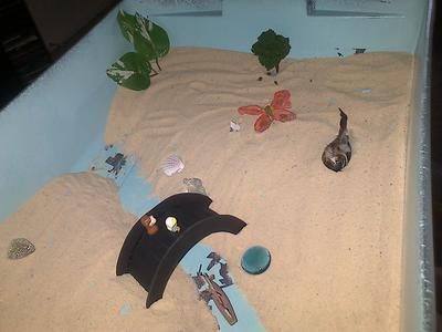 Sand Tray Therapy Bridge 3