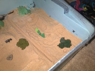 Sand Tray Therapy 3