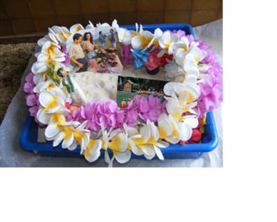 Sand tray Therapy Class, Multicultural Midterm with Sand Tray Miniatures from Hawaii Haku Lei, Student #2, Martha