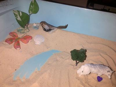Sand Tray Therapy Sand  Tray Personality Tray from Student 4