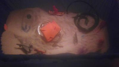 Sand Tray Therapy Class-Dream Analysis-Student #11, Picture Three