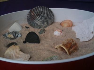 Sand Tray Therapy Zen Garden - Close up
