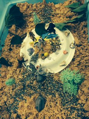jungle 1 for Sand Tray Therapy Class