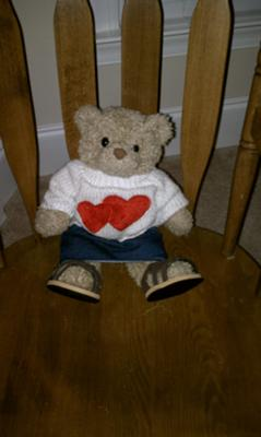 Teddy Bear Experience in Play Therapy Class idea
