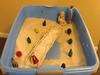 The Bridge Activity for Sand Tray Therapy Class