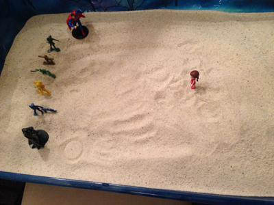 Tray 1/2 for Sand Tray Therapy