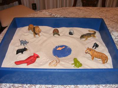 Sandtray Activity for Preschool through First Grade Children (2-7 years-old, Piaget's Pre-Operational Stage)