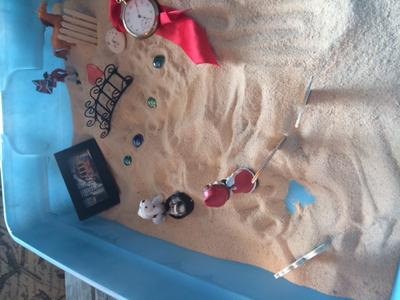 Sand Tray Therapy Nature Tray 2