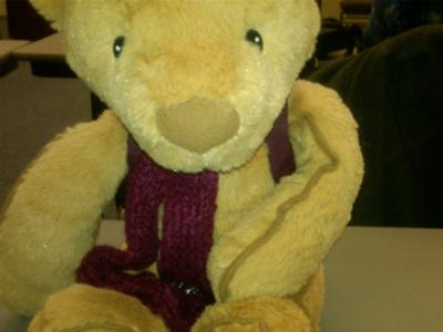 A Teddy Bear Therapy Assignment for Play Therapy