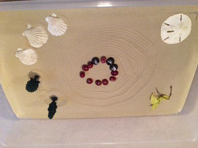 Zen Sand Tray Therapy Garden Example #1